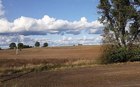 Dziś i jutro polskiego rolnictwa